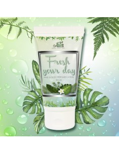 Fresh Your Day Lotion Mains & Corps 50ML