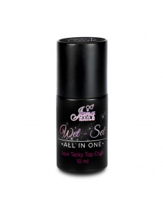 "Wet Set ""All in One"" 10ML / NON STICKY"