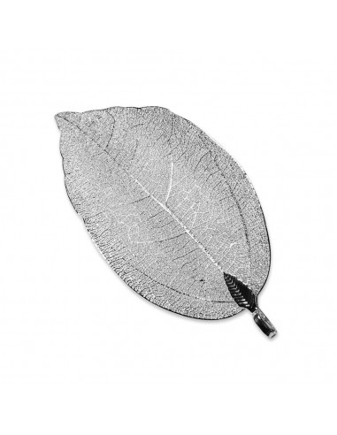 Photo Decoration - Leaf