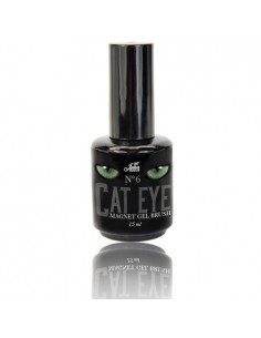 Cat Eye Gel Brush No6 15ML